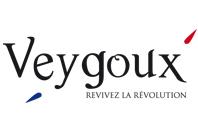 Logo-manoir-veygoux