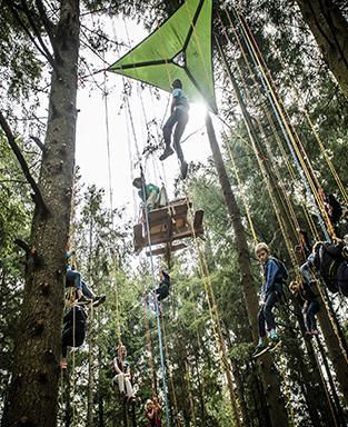 VVX 2019 - Grimpe d'arbres 313X384
